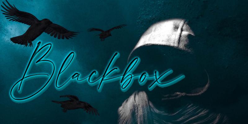 Banner Blackbox-Area